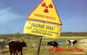 Cernobyl2