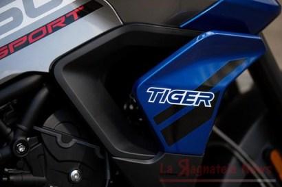 tiger850s6