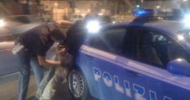 San Nicola la Strada. Spaccio di sostanze stupefacenti sulla Rotonda: la Polizia lo arresta in flagranza