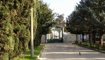 Ufficio Verde Pubblico Salerno : Aversa. nuovo dirigente al comune larampa.it