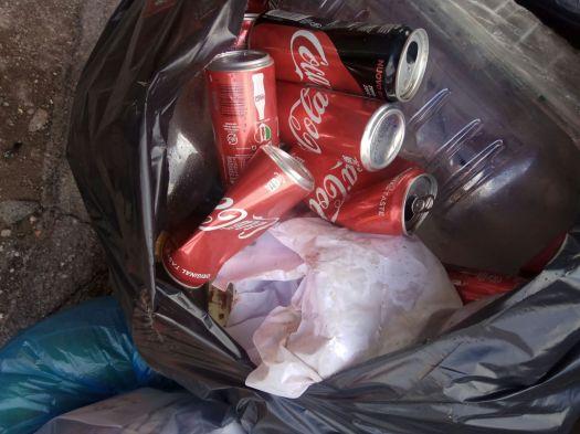 rifiuti monnezza immondizia (2)