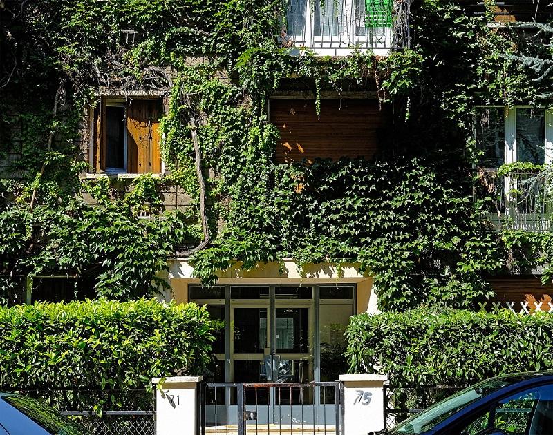 Végétalisons Paris