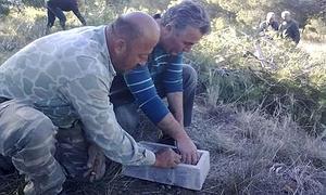 Dos directivos de la Sociedad de Cazadores La Perdiz Roja de Santo Ángel (Murcia), soltando conejos, el pasado junio de 2012.