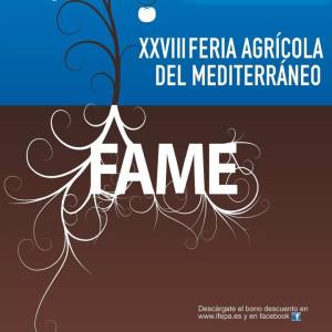 Fame 2013