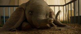Lambscores: Dumbo