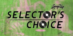 Selector's Choice: Deejay Theory