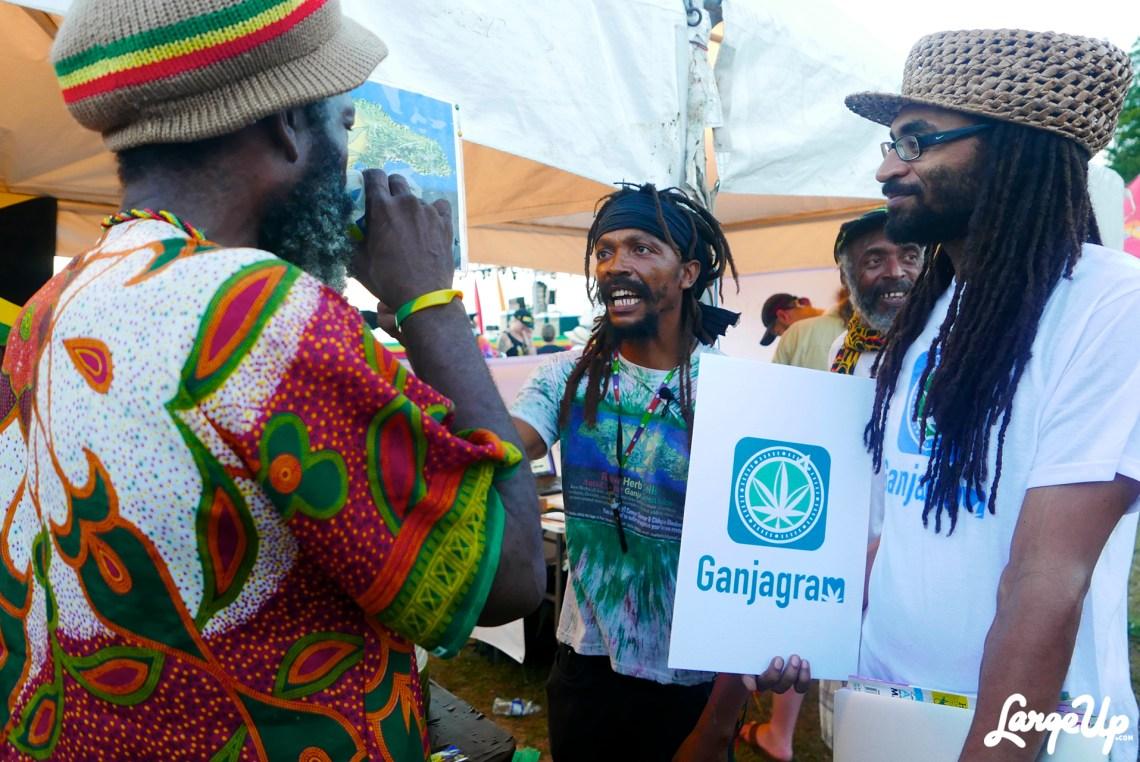 jamaica-cannabis-cup-24