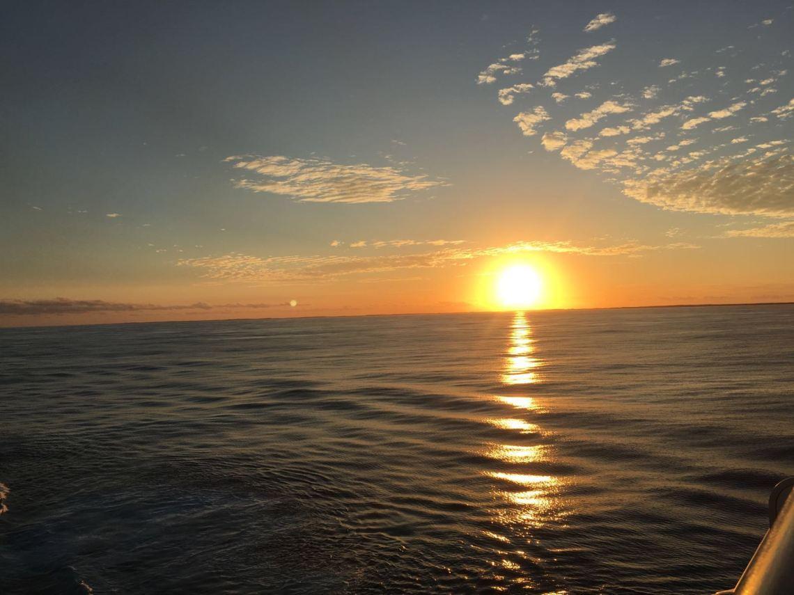 birdheye-view-weed-west-indies-sunset