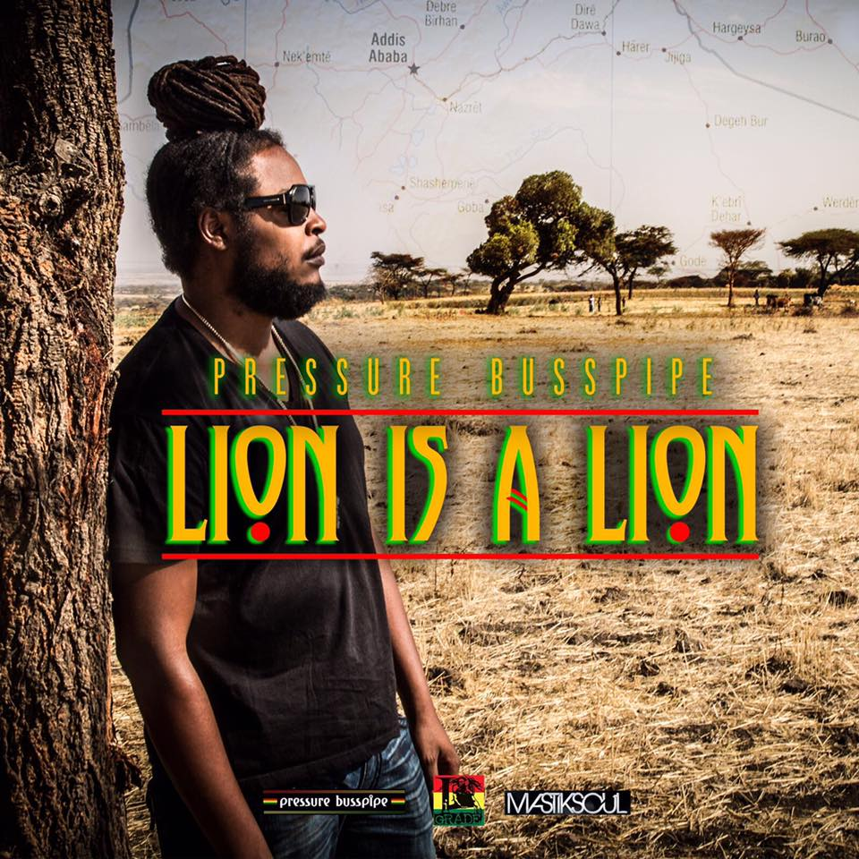 pressure-busspipe-lion-is-a-lion