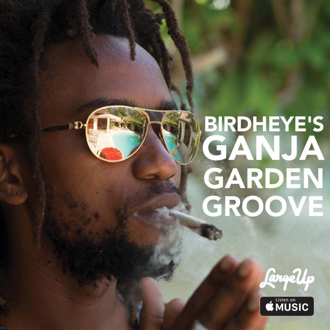 Ganja-Garden-Groove-Apple-Music-Logos