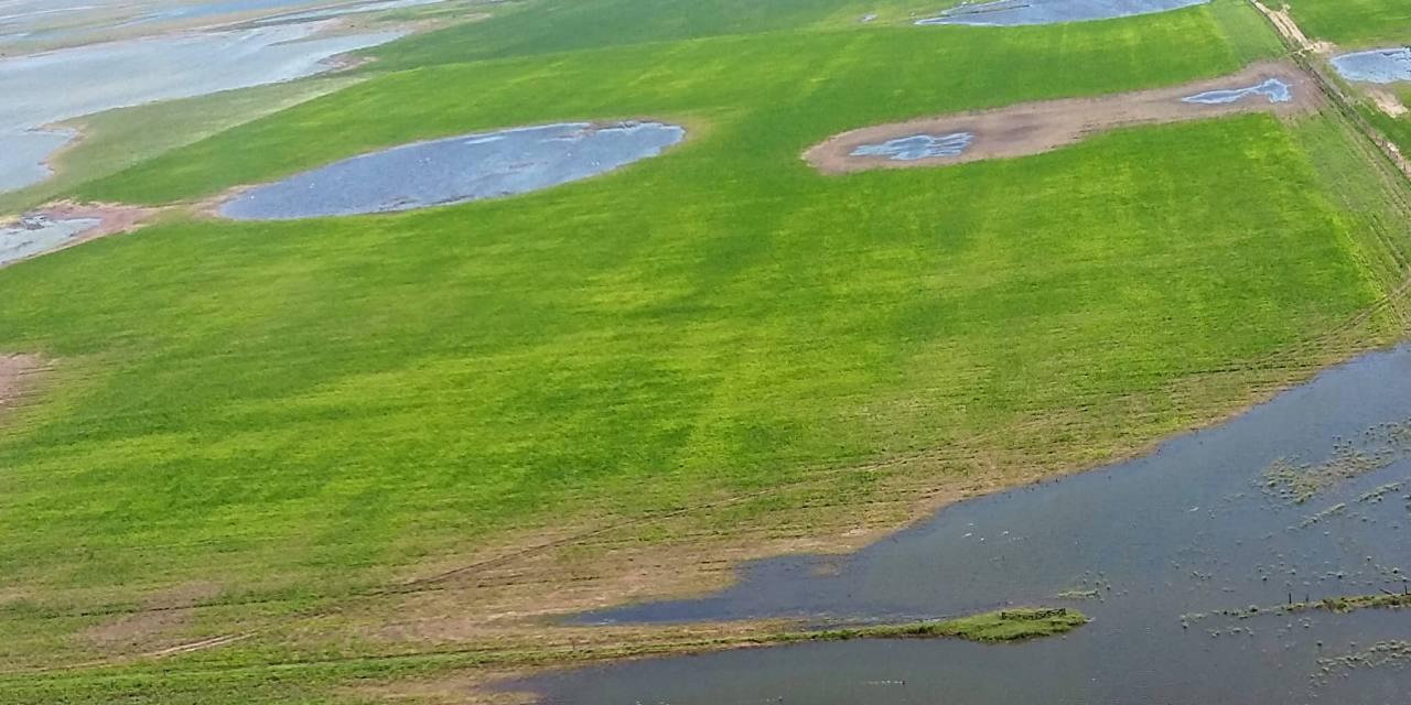 Prorrogan la Emergencia Agropecuaria hasta fin de año