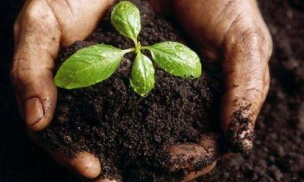Jornada de Agroecología y Soberanía Alimentaria