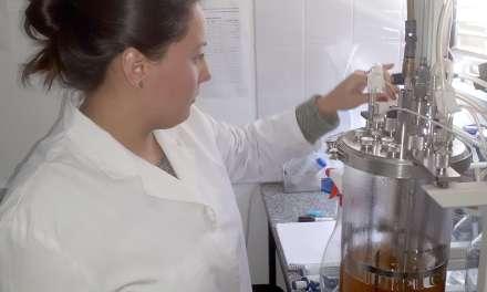 Investigadores lograron producir biocombustible con suero de queso