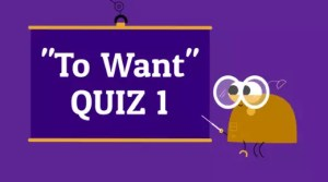Quiz Verb Want