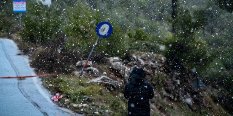 Καλλιάνος: Τι έγινε τελικά με τις χιονοπτώσεις-Να ζητήσω συγνώμη για τα 100 μέτρα διαφορά;