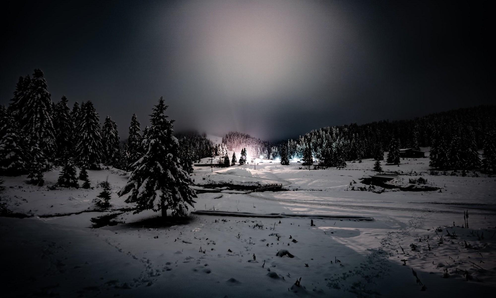 Με τις… γουρούνες στο χιονισμένο δάσος Περτουλίου - ΒΙΝΤΕΟ