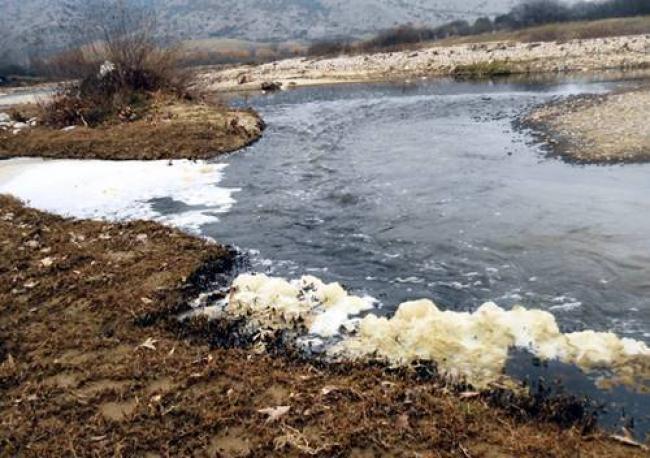 Αγοραστός: Και τρίτη επιχείρηση παραπέμπεται για μόλυνση στον Ελασσονίτη