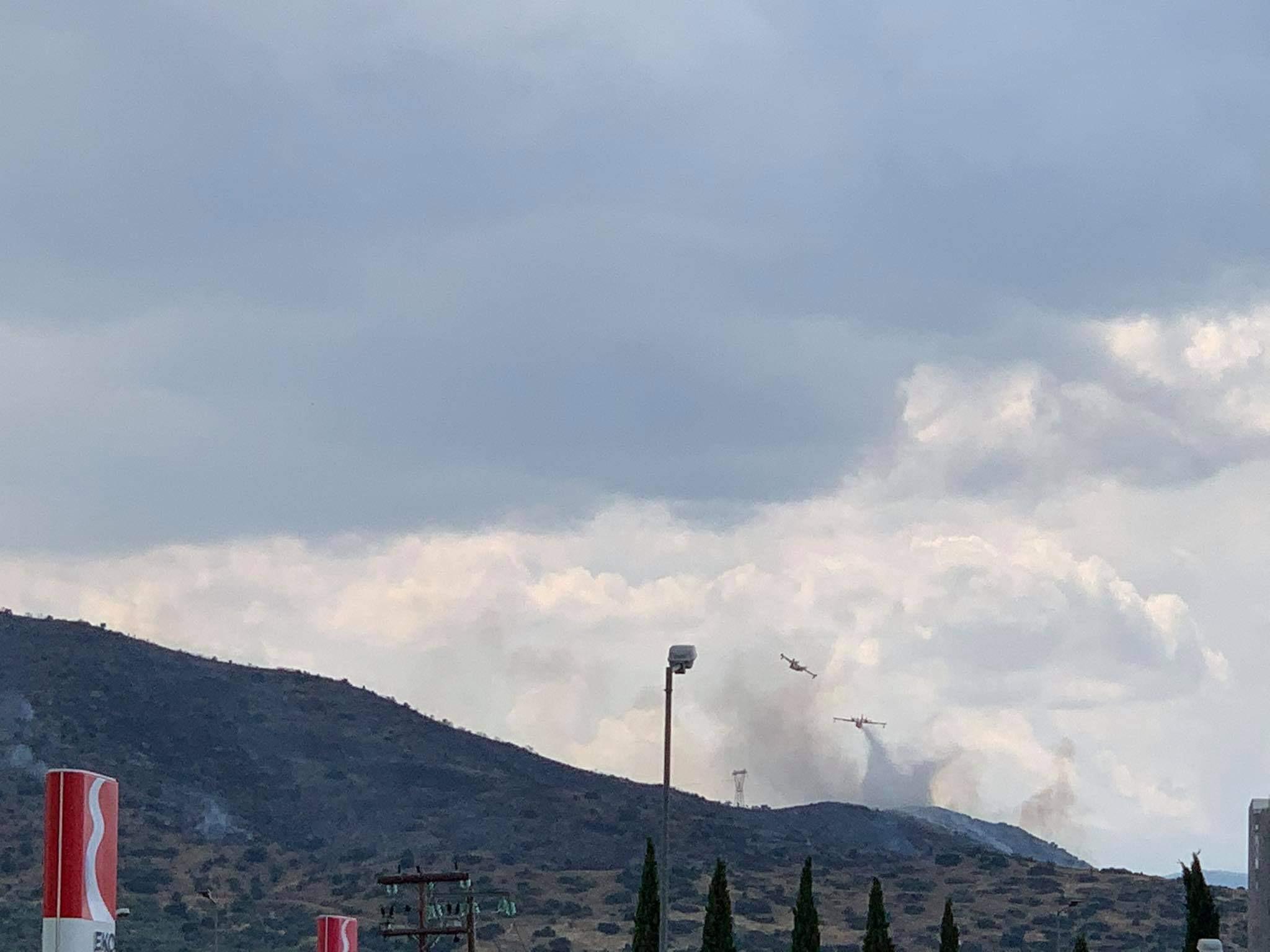 Υπό έλεγχο η φωτιά στον δήμο Τεμπών με την συνδρομή και αεροπλάνων - ΒΙΝΤΕΟ και ΦΩΤΟ