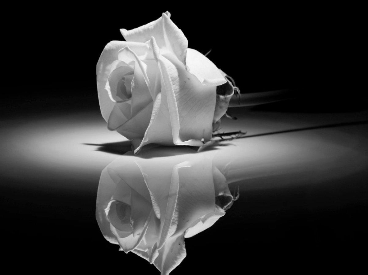 Βαρύ πένθος για τον Νίκο Κατσαρό