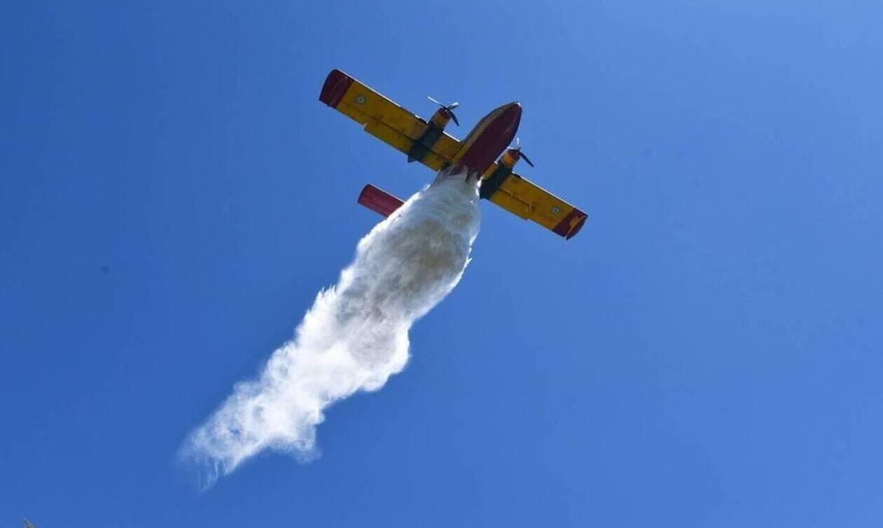 Λάρισα: Οριοθετήθηκε η πυρκαγιά στην περιοχή Καλό Νερό