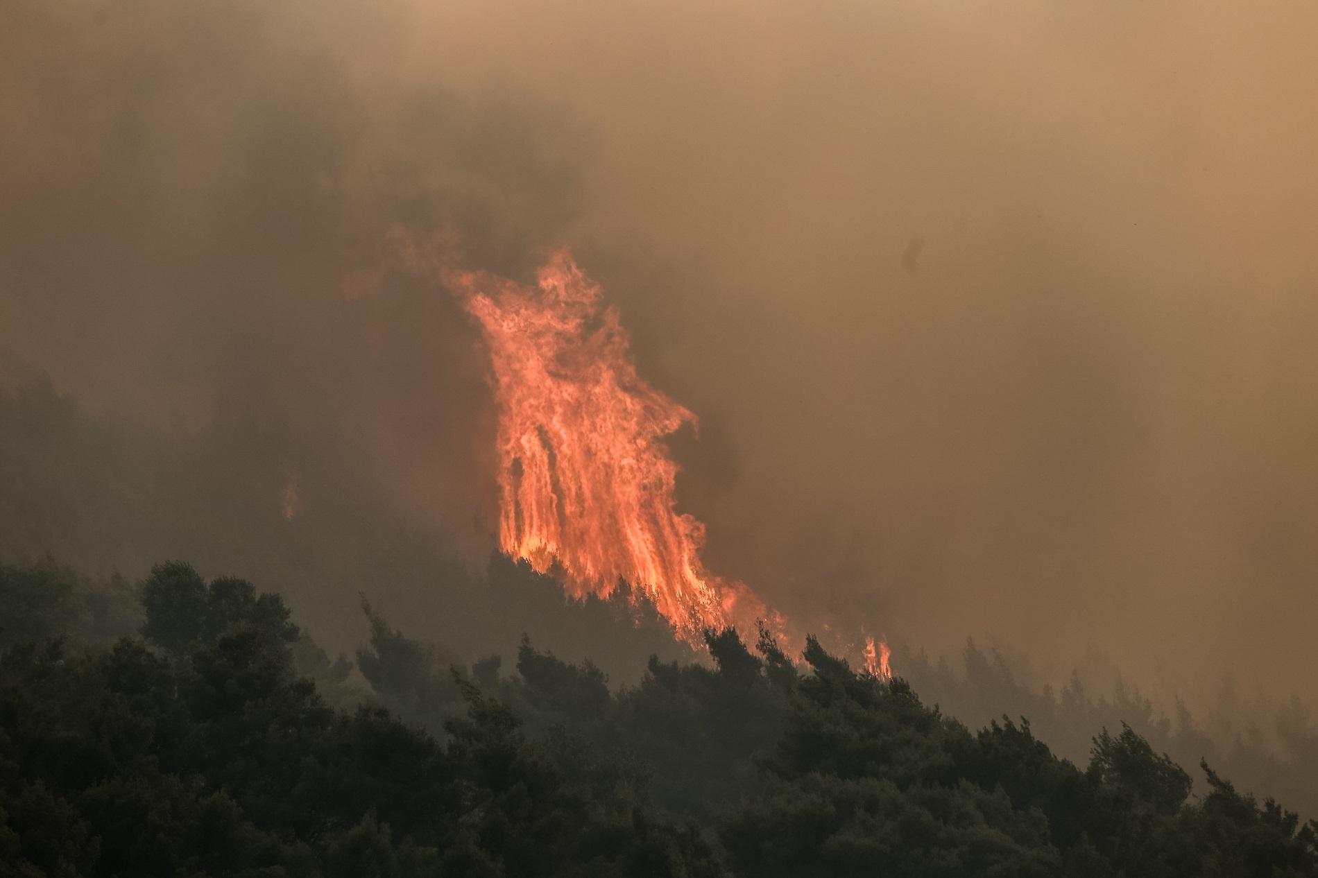 Μάχη με τις φλόγες στη Λευκίμη Έβρου