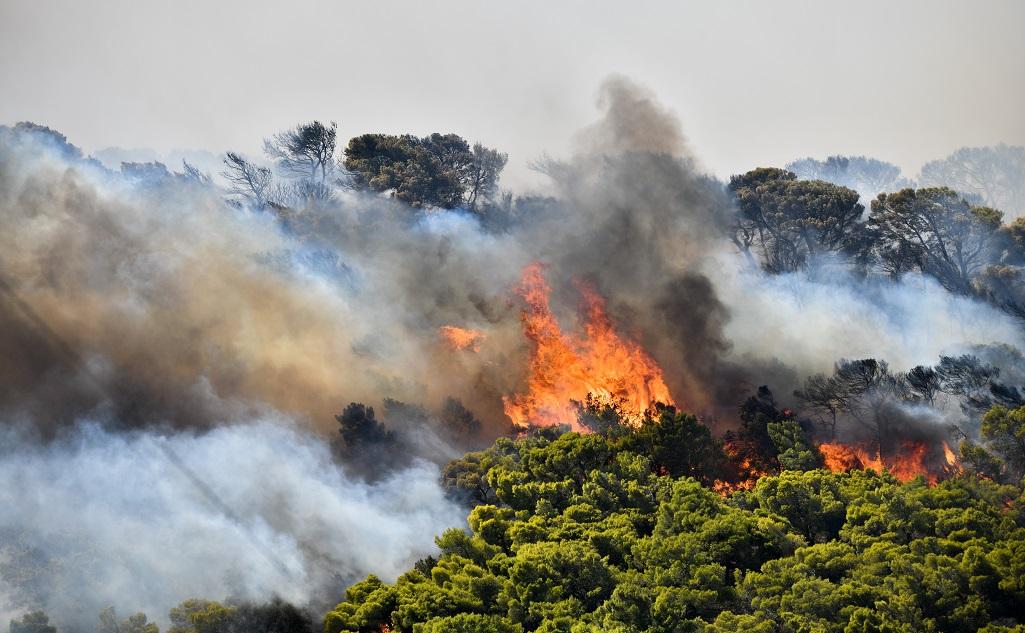 Φωτιά σε όχημα στην Αρτέμιδα – Κίνδυνος πυρκαγιάς λόγω της πευκόφυτης περιοχής