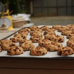 Mmmh, on profite de la chauffe pour cuire quelques cookies.