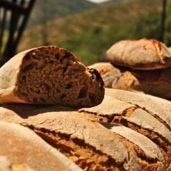 Quelques pains, au soleil d'Ardèche !