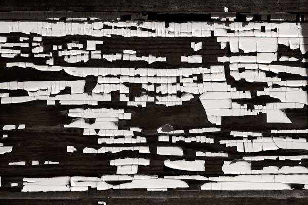 POTD: Mono-Mondrian #1