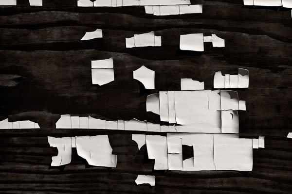 POTD: Mono-Mondrian #4