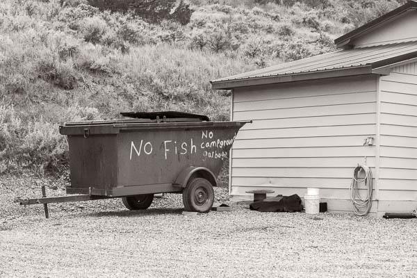 POTD: No Fish