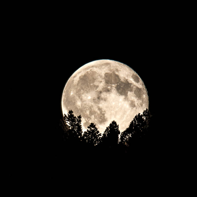 POTD: Blue Moon