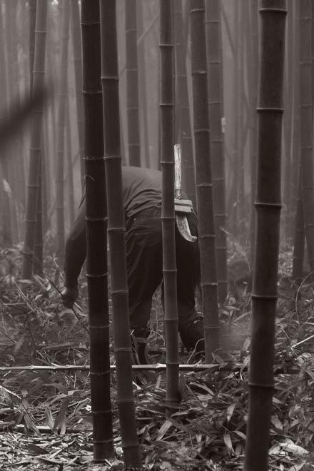 POTD: Bamboo Cutter #2