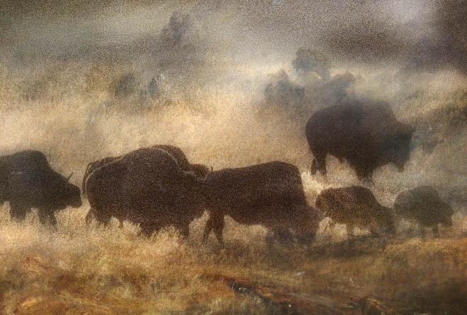 POTD: Turner in Yellowstone