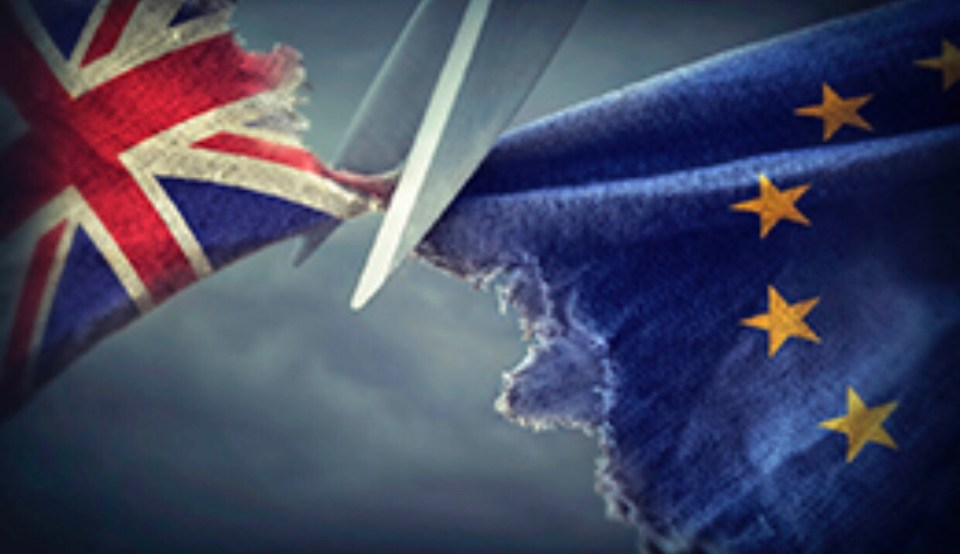 What does the brexit transition agreement mean to you as a trader but while it signifies political progress how will this affect you and your business and what can you do about it today under the terms platinumwayz