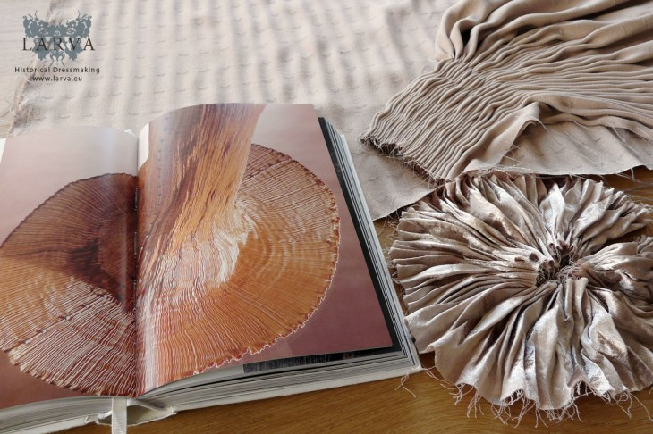 fortuny-delphos-book