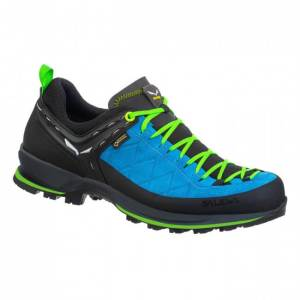 MS MTN Trainer 2 GTX Blue Green