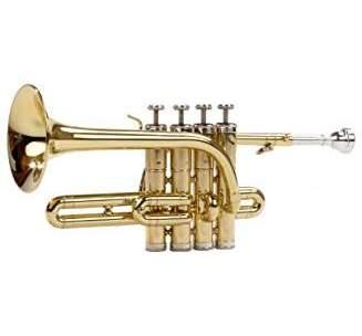 Quelle est la meilleure trompette piccolo ? Le Top 10 de 2020 !
