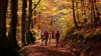 excursión parque natural redes