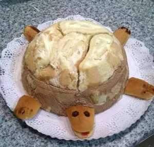 Mi morena Tarta Tortuga
