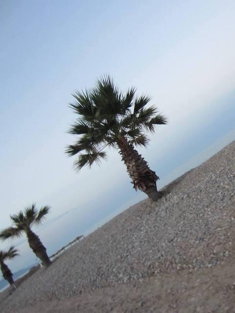Mi morena Morirme bailando en tu mirada playa