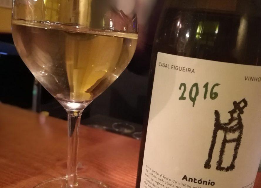 Casal Figueira – Antònio