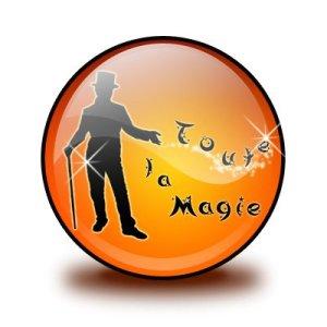 Logo TLM