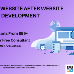 Web development company in ghaziabad