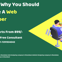 Reason Why You Should Become A Web Developer