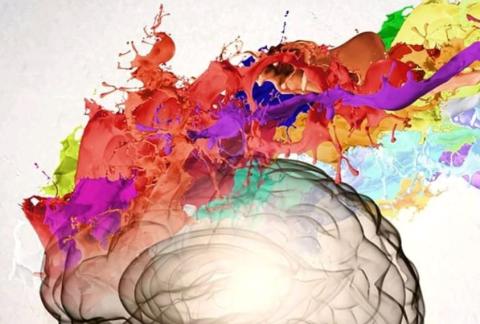 Psicodélicos, neurociencia y salud