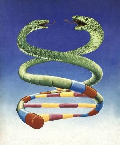 RESEÑA: La serpiente cósmica