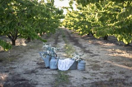 Décoration de mariage romantique et vintage-les arrosoirs en zinc