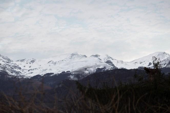 Mariage dans les Pyrénées