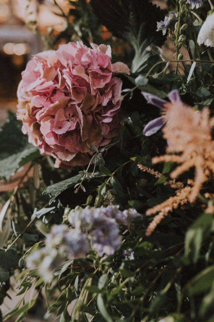 hortensia-rose-mariage